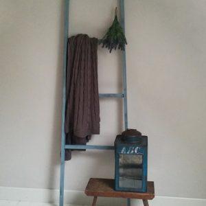0874 Blauwe ladder